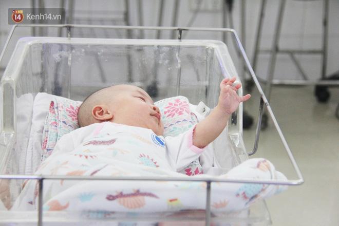 Mẹ đẻ ở bệnh viện Từ Dũ rồi bỏ đi biệt tích, 3 bé gái 4 tháng tuổi phải chuyển đến nơi nuôi trẻ mồ côi trước Tết - Ảnh 9.
