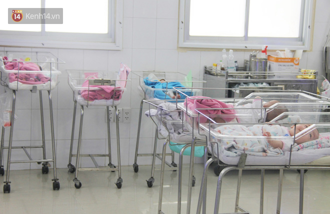 Mẹ đẻ ở bệnh viện Từ Dũ rồi bỏ đi biệt tích, 3 bé gái 4 tháng tuổi phải chuyển đến nơi nuôi trẻ mồ côi trước Tết - Ảnh 2.