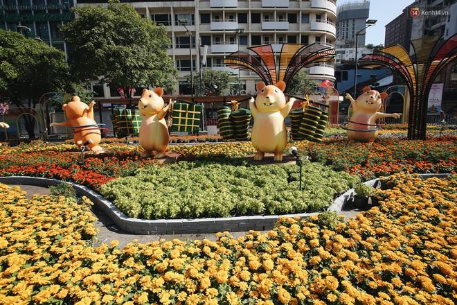 Cận cảnh đường hoa Nguyễn Huệ Tết Canh Tý 2020 khoe sắc rực rỡ trước ngày khai mạc - Ảnh 7.