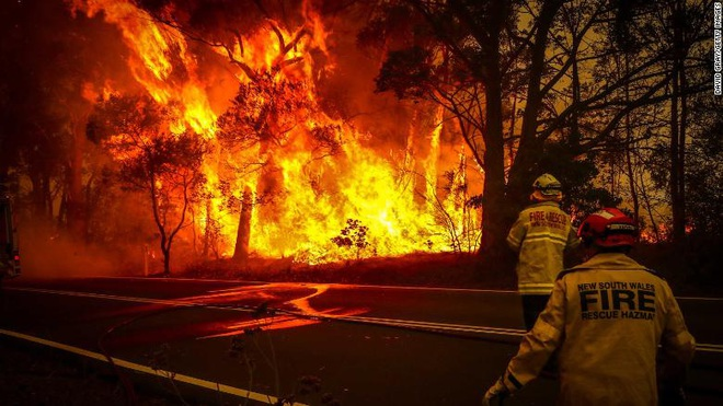 Gần NỬA TỈ sinh vật bị thiêu rụi, 1/3 số gấu koala chết cháy: Úc đang trải qua trận cháy rừng đại thảm họa thực sự mà chưa nhìn thấy lối thoát - Ảnh 5.