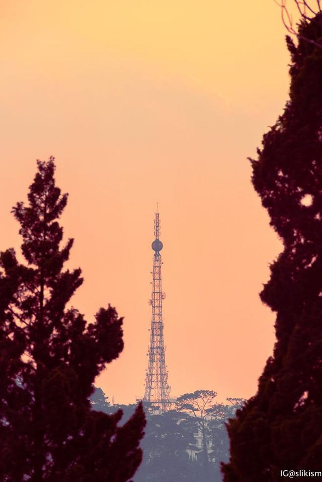 Không tin vào mắt mình đây là bộ ảnh được chụp tại Đà Lạt, nhìn thoáng qua cứ ngỡ như nước Nhật xa xôi! - Ảnh 5.