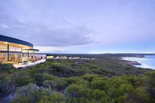 Nước Úc trước và sau th.ảm h.ọa: Cánh rừng xanh mướt đầy sức sống nay chỉ còn là đống tro tàn, mái nhà của Kangaroo b.ị huỷ hoại - Ảnh 3.