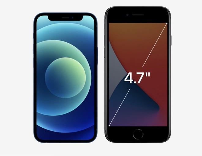 Vì sao iPhone 12 Mini sẽ là chiếc điện thoại must have của phái nữ? - ảnh 1