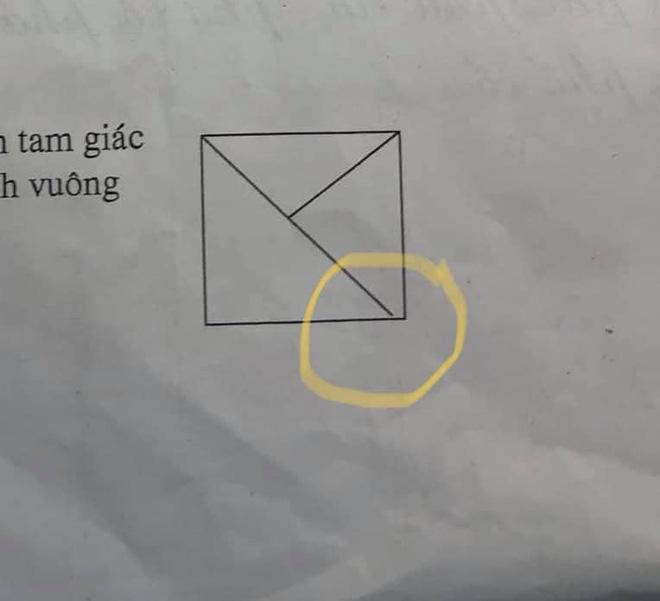 Con gái đếm 4 tam giác nhưng bị gạch sai, người mẹ chất vấn giáo viên liền nhận về lời giải tâm phục khẩu phục - ảnh 2