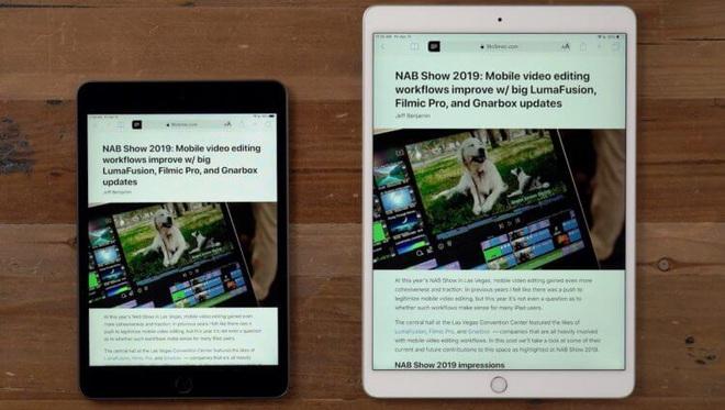 Vì sao iPad mini 5 lại đắt hơn iPad gen 8 vừa ra mắt? - Ảnh 1.