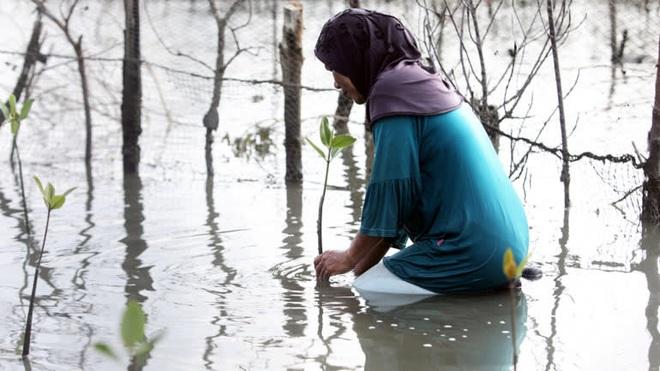 Việt Nam, Trung Quốc rồi Campuchia: Tại sao câu chuyện lũ lụt tại các quốc gia châu Á đang ngày càng trầm trọng? - ảnh 5