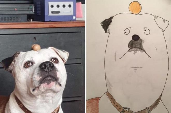 Vẽ chó mèo xấu như ma cấu nhưng vẫn bán được 150 triệu đồng, họa sĩ bèn đem đi từ thiện cho đỡ mang tiếng - ảnh 6