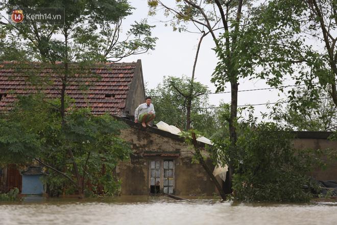 Hơn 2 tuần chịu trận lũ lịch sử, người dân Quảng Bình vẫn phải leo nóc nhà, bơi giữa dòng nước lũ cầu cứu đồ ăn - ảnh 10