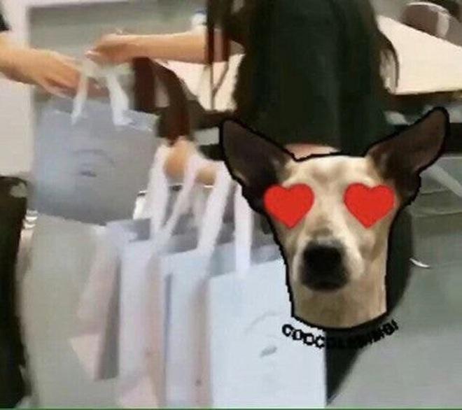 Trước khi bị bóc phốt, Irene từng được khen hết lời khi mua hẳn túi Chanel trăm triệu tặng stylist - ảnh 7