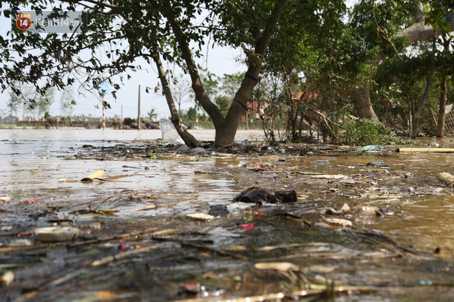 """Ảnh: Người dân Quảng Bình bì bõm """"bơi"""" trong biển rác sau trận lũ lịch sử, nguy cơ lây nhiễm bệnh tật - Ảnh 13."""