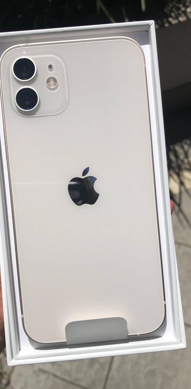 Cũng là màu xanh, nhưng iPhone 12 cũng có xanh this, xanh that - ảnh 6