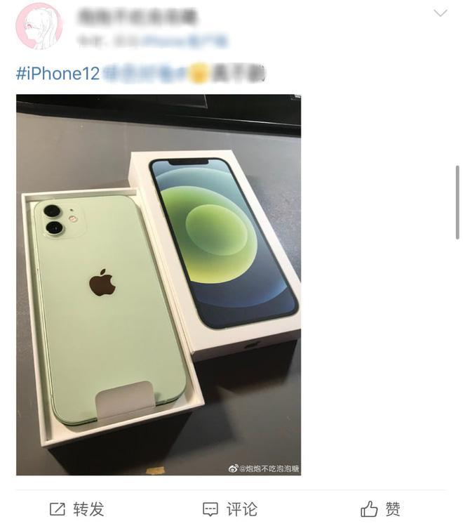 Cũng là màu xanh, nhưng iPhone 12 cũng có xanh this, xanh that - ảnh 4