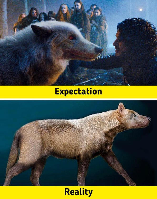 7 sinh vật huyền thoại tưởng chỉ có ở phim ảnh nhưng lại từng làm mưa làm gió Trái Đất trong quá khứ, nàng tiên cá cũng không ngoại lệ - ảnh 6