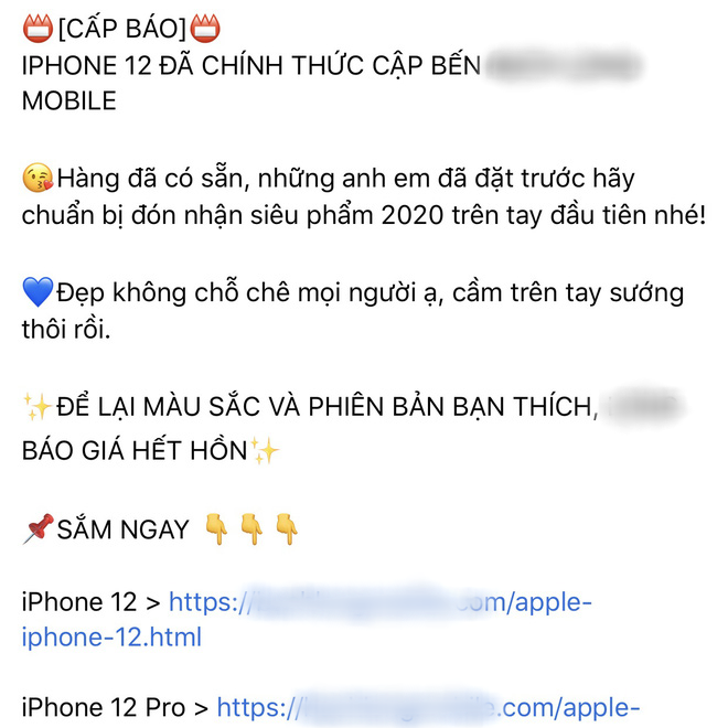 Thị trường iPhone 12 xách tay tại Việt Nam đìu hiu, con buôn chủ yếu đang thăm dò thượng đế - ảnh 1