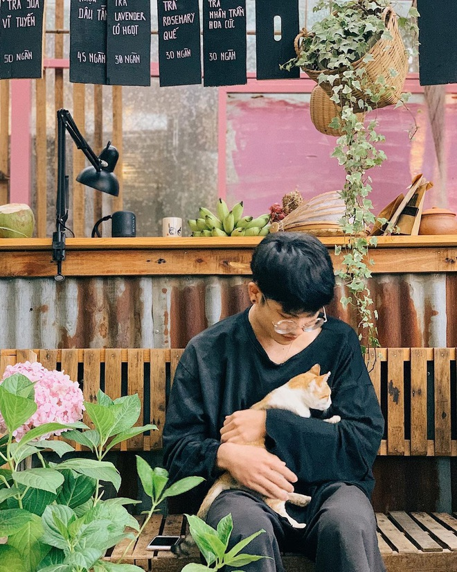 """Dalat has 4 cafes in the style of """"chill spread"""" that are extremely rare to know: Located in the middle of a pine forest, every corner of the street is beautiful - Photo 15."""