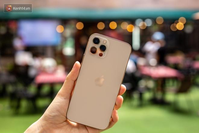 Ngắm trọn bộ iPhone 12 Pro đầy đủ 4 màu sắc vừa về Việt Nam - Ảnh 5.