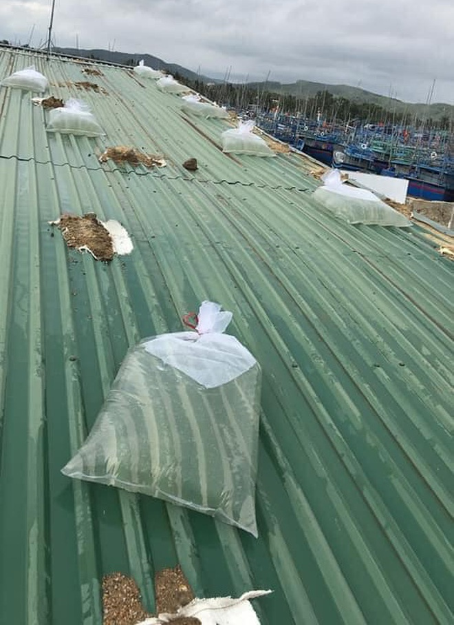 Bình Định: Người dân gần tâm bão số 9 hối hả dùng bao nước chằng chống nhà tốc mái - ảnh 4