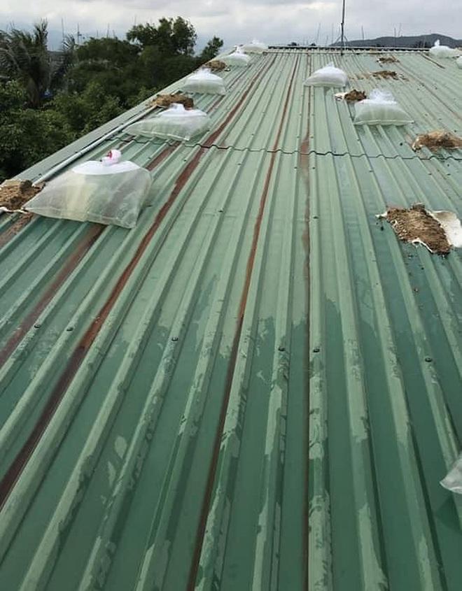 Bình Định: Người dân gần tâm bão số 9 hối hả dùng bao nước chằng chống nhà tốc mái - ảnh 3