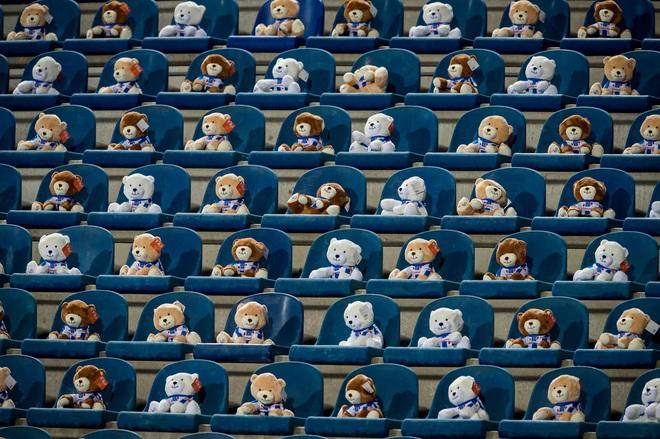 15.000 chú gấu bông đến sân cổ vũ CLB cũ của Văn Hậu khiến cả thế giới ngỡ ngàng - ảnh 2