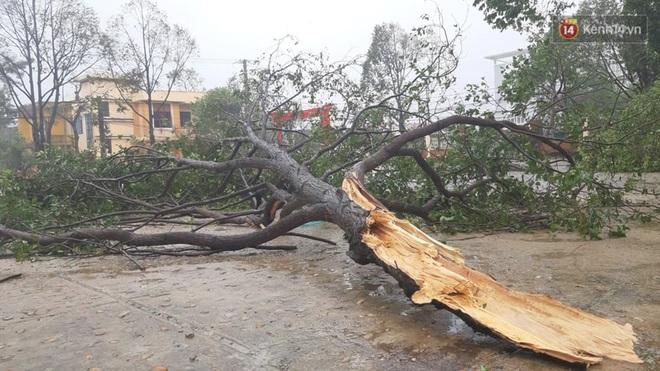 Bão số 9 quần thảo dữ dội trên đất liền: Quảng Nam sạt lở núi vùi lấp nhiều nhà, phần bão mạnh nhất hiện tập trung ở Gia Lai - Kon Tum - Ảnh 7.