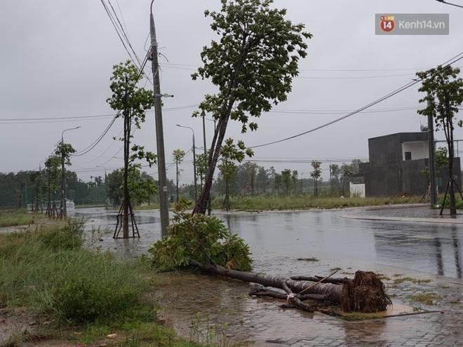Bão số 9 áp sát miền Trung: Phong toả một phần Quốc lộ 1A khiến hàng trăm xe ùn tắc; Quảng Ngãi đã có nhà bị tốc mái - Ảnh 2.