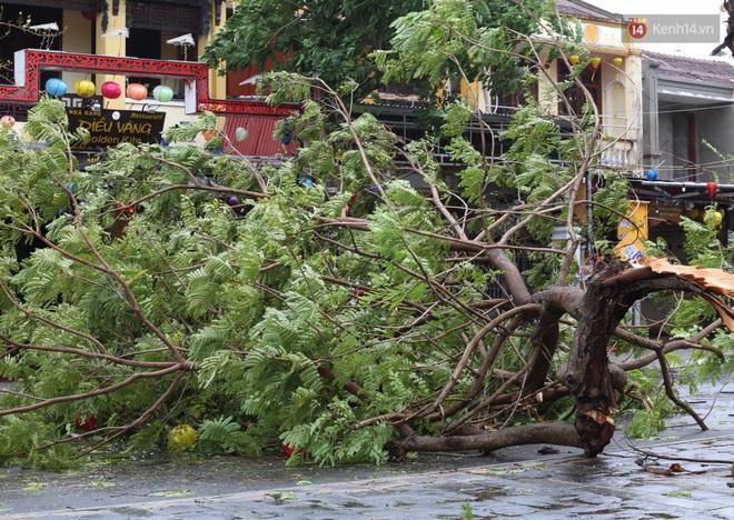 Bão số 9 sầm sập đổ bộ đất liền: Gió giật kinh hoàng làm tốc mái nhiều trường học và nhà dân, 2 người chết, nhiều người bị thương - Ảnh 3.