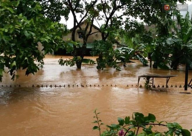 Sau khi bão số 9 càn quét, người dân đau xót nhìn khung cảnh tan hoang, tài sản bị nước lũ cuốn trôi - Ảnh 2.