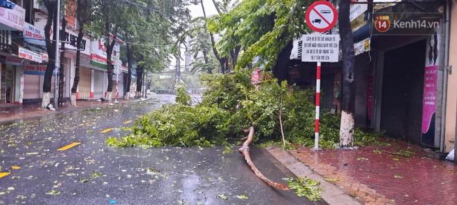 Bão số 9 sắp đổ bộ: Gió giật mạnh ở Quảng Ngãi, đã có nhà bị tốc mái; Hội An ngập sâu nhiều tuyến đường - Ảnh 2.