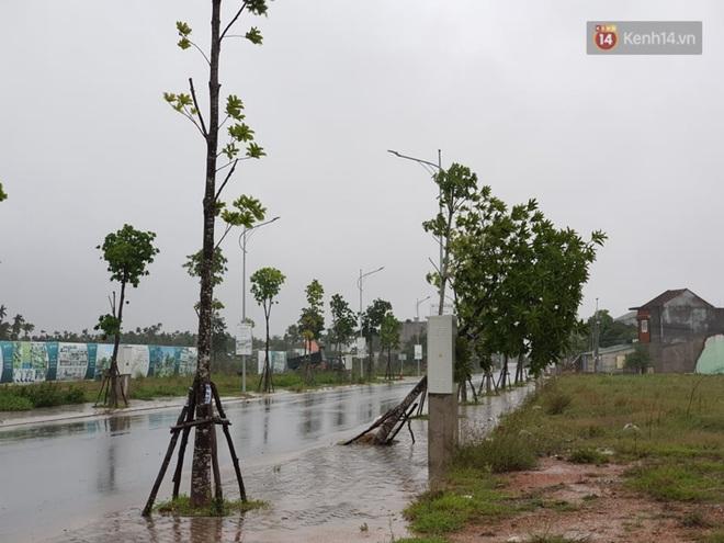 Bão số 9 áp sát miền Trung: Phong toả một phần Quốc lộ 1A khiến hàng trăm xe ùn tắc; Quảng Ngãi đã có nhà bị tốc mái - Ảnh 5.