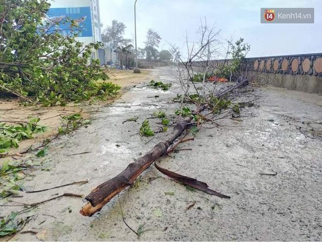 Những hình ảnh đầu tiên tại đảo Lý Sơn khi bão số 9 đi qua: Mọi thứ đều tan hoang, người dân thất thần bên đống đổ nát - Ảnh 5.