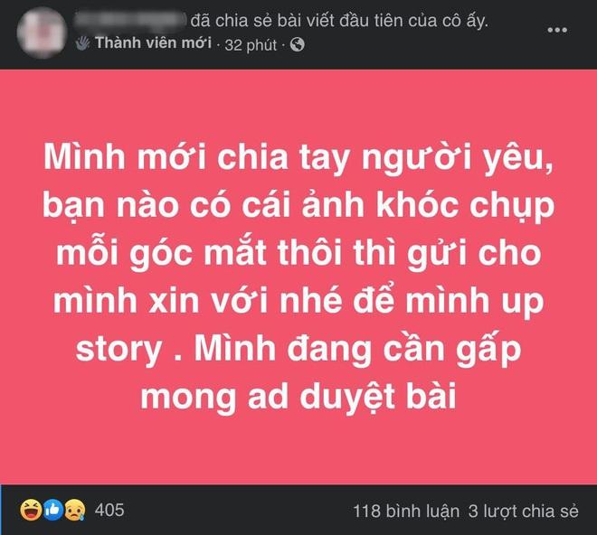 Hội người giả trân Việt Nam là gì mà mới xuất hiện vài ngày đã thu hút mấy chục nghìn thành viên? - ảnh 3