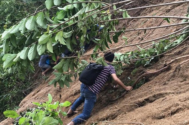 Quảng Nam đề nghị Bộ Quốc phòng dùng trực thăng tiếp tế lương thực cho 3.000 hộ dân - ảnh 2