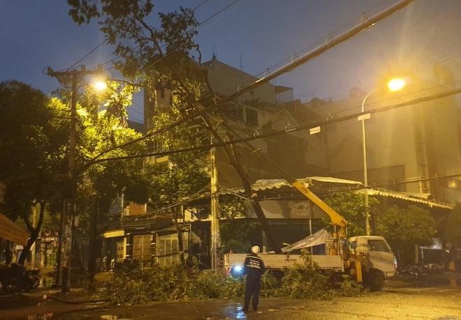 Mưa to gió lớn như bão, hàng chục cây xanh bật gốc ở Sài Gòn - ảnh 4
