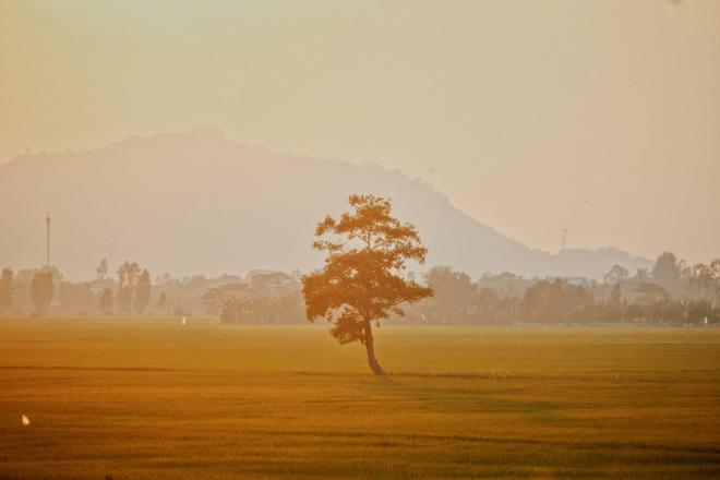 Hành trình 3 ngày đi khắp An Giang của chàng trai 9x, xem xong ảnh chỉ muốn thốt lên: Vùng đất đẹp nhất miền Tây là đây! - Ảnh 1.