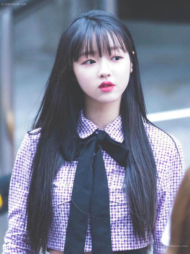 8 nàng búp bê sống của Kpop: Lisa siêu thực, mỹ nhân đẹp nhất thế giới Tzuyu có đọ lại dàn nữ thần đàn chị? - ảnh 28