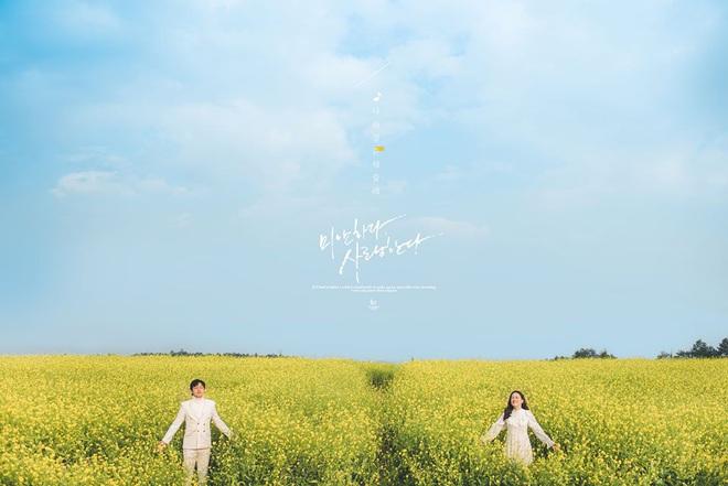 Dân mạng sửng sốt trước cánh đồng hoa cải vàng đẹp như tranh vẽ có thật tại Đà Lạt, xem ảnh mà ngỡ đâu nước Nhật xa xôi - Ảnh 6.