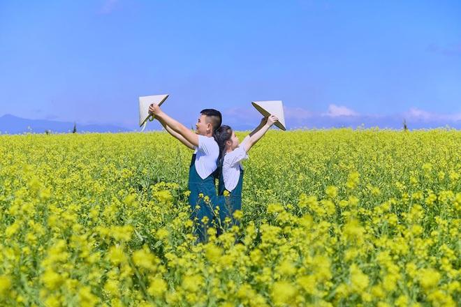 Dân mạng sửng sốt trước cánh đồng hoa cải vàng đẹp như tranh vẽ có thật tại Đà Lạt, xem ảnh mà ngỡ đâu nước Nhật xa xôi - Ảnh 4.