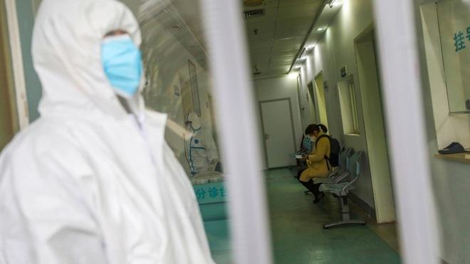 Công bố 2 ca nhiễm số 46 và 47 ở Việt Nam: Là nữ tiếp viên hàng không từ London về nước và người giúp việc trong nhà bệnh nhân 17 - Ảnh 1.
