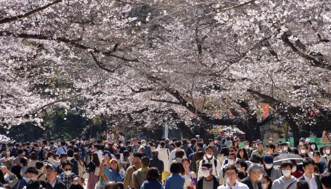 Nhật Bản có hơn 1300 người nhiễm Covid-19 trên đất liền, có thể ban bố tình trạng khẩn cấp; Tokyo trở thành tâm dịch mới - ảnh 1