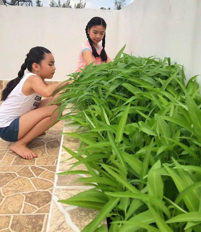 Con gái MC Quyền Linh lại gây thương nhớ khi xuất hiện trong biệt thự vườn ngập hoa trái được định giá 21 tỷ - ảnh 4