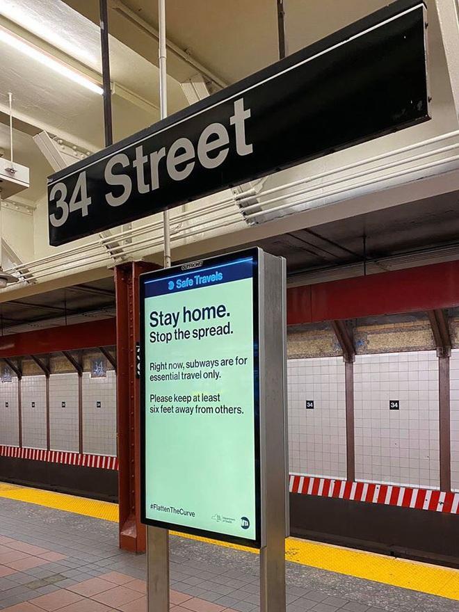 Cựu du học sinh Việt tại New York: Nếu về nước sẽ phải cân nhắc những ràng buộc công việc, hợp đồng nhà cửa và việc quay lại sau này! - ảnh 11