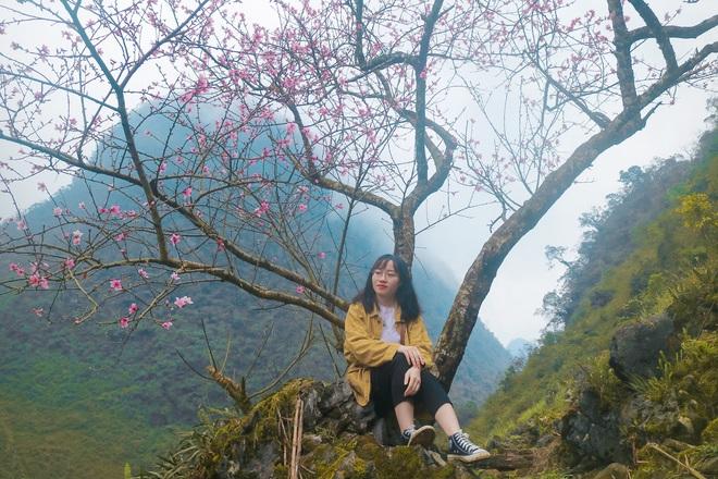 Hà Giang tháng 3 đẹp mê hồn trong mắt cô gái trẻ xứ Thanh, thật khó tin khi 4 loài hoa núi rừng đủ sắc màu cùng nở một lúc - Ảnh 6.