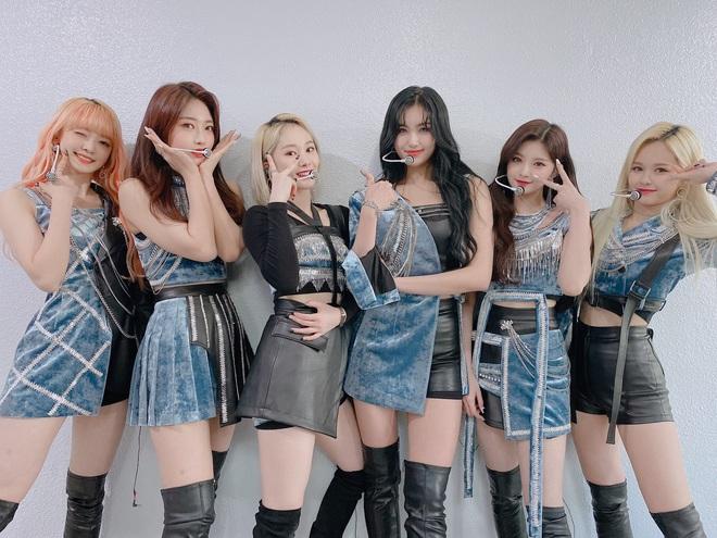 Nhóm nhạc cosplay BLACKPINK chính thức cho em trai BTS ra rìa, là tân binh 2019 duy nhất lên đến đẳng cấp YouTube ngang bằng ITZY - Ảnh 5.