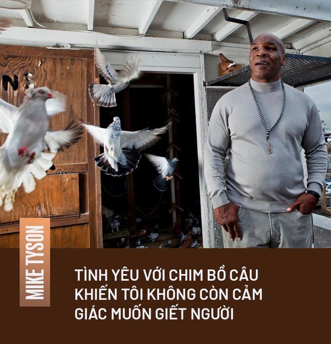 Mike Tyson và sợi dây liên kết khó tin với những chú chim bồ câu: Là mối tình đầu, là cứu cánh trong giai đoạn tăm tối mà chỉ muốn giết người - ảnh 3