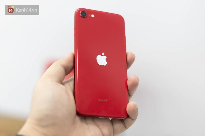 iPhone SE 2020: Cấu hình cao, giá vừa tầm nhưng chưa phải là món hời cho game thủ mobile - ảnh 3