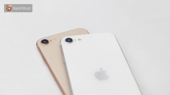 iPhone SE 2020: Cấu hình cao, giá vừa tầm nhưng chưa phải là món hời cho game thủ mobile - ảnh 5