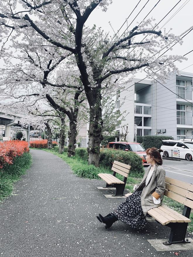 Nữ du học sinh Nhật Bản cải tạo nhà trọ cũ kỹ thành nơi vừa chill vừa sang, chi phí mới là điều bất ngờ nhất - Ảnh 4.
