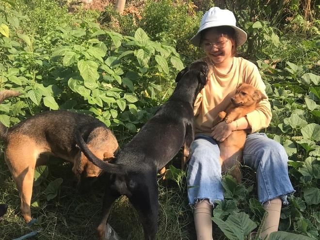 """Cô nhân viên văn phòng nuôi đàn chó ta 9 con: Ai cũng bảo chó cỏ không đẹp không được cưng, thì tui cưng!"""" - ảnh 9"""