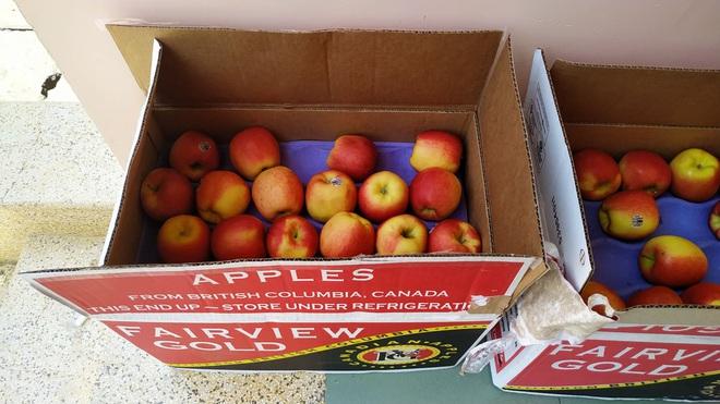 Những phần cơm cách ly bắt mắt và đẩy đủ dinh dưỡng gây sốt MXH: Thực đơn thay đổi liên tục, có thêm cả nho Úc, táo Canada - ảnh 11