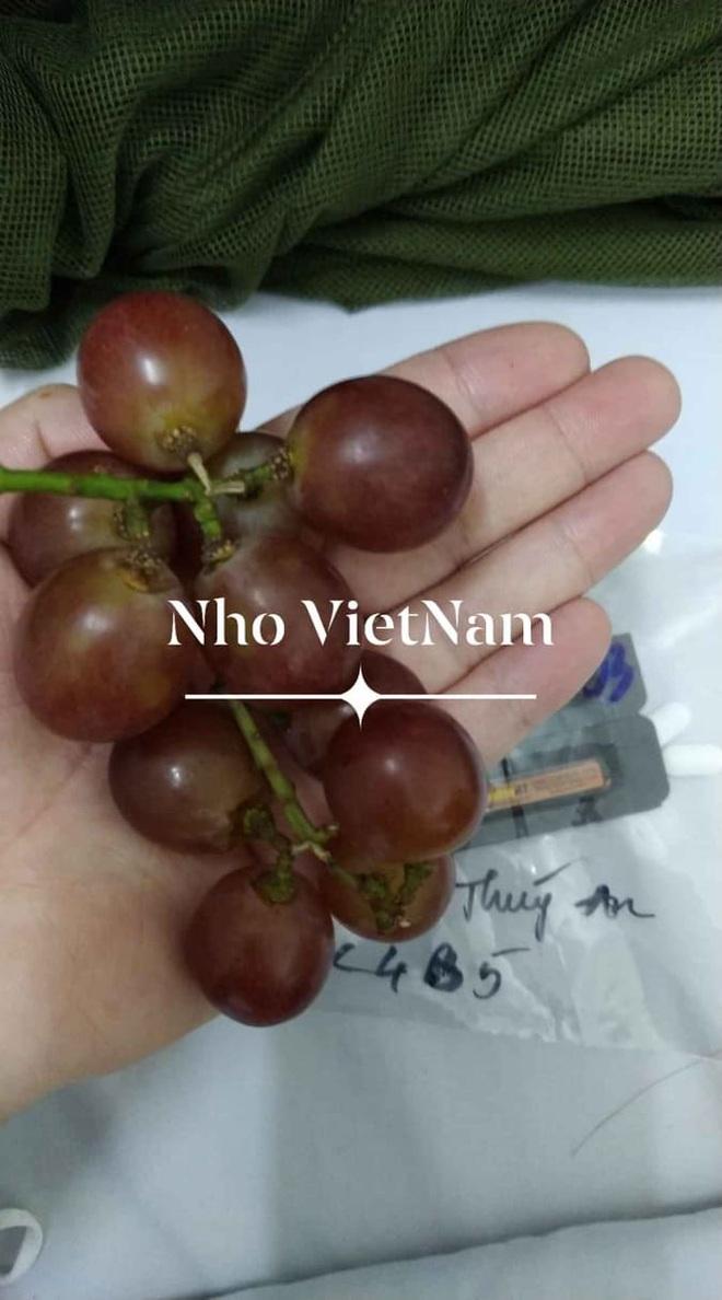 Những phần cơm cách ly bắt mắt và đẩy đủ dinh dưỡng gây sốt MXH: Thực đơn thay đổi liên tục, có thêm cả nho Úc, táo Canada - ảnh 9